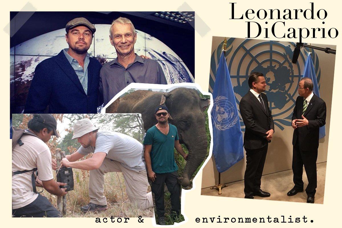 Leonardo DiCaprio-Umwelt-Naturschutz-Vanillaholica