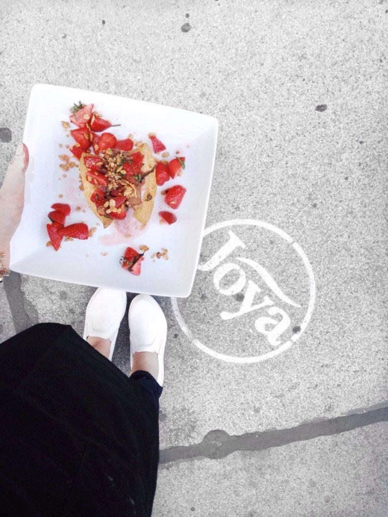 joya-vegan-leicht-vanillaholica-lifestyleblog-fair-kochen