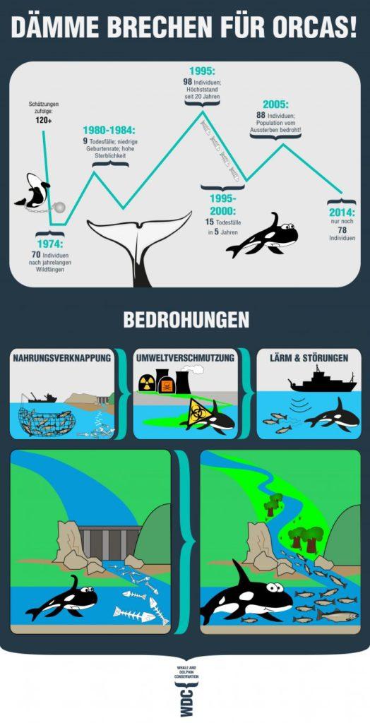 wdc_de_infografik_daemme_brechen_fuer_orcas