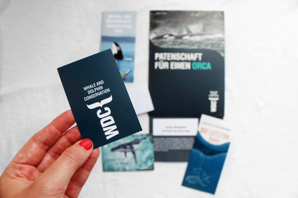 Orca-bedrohte Art-Tier Patenschaft-Orca Patenschaft-Tierschutz