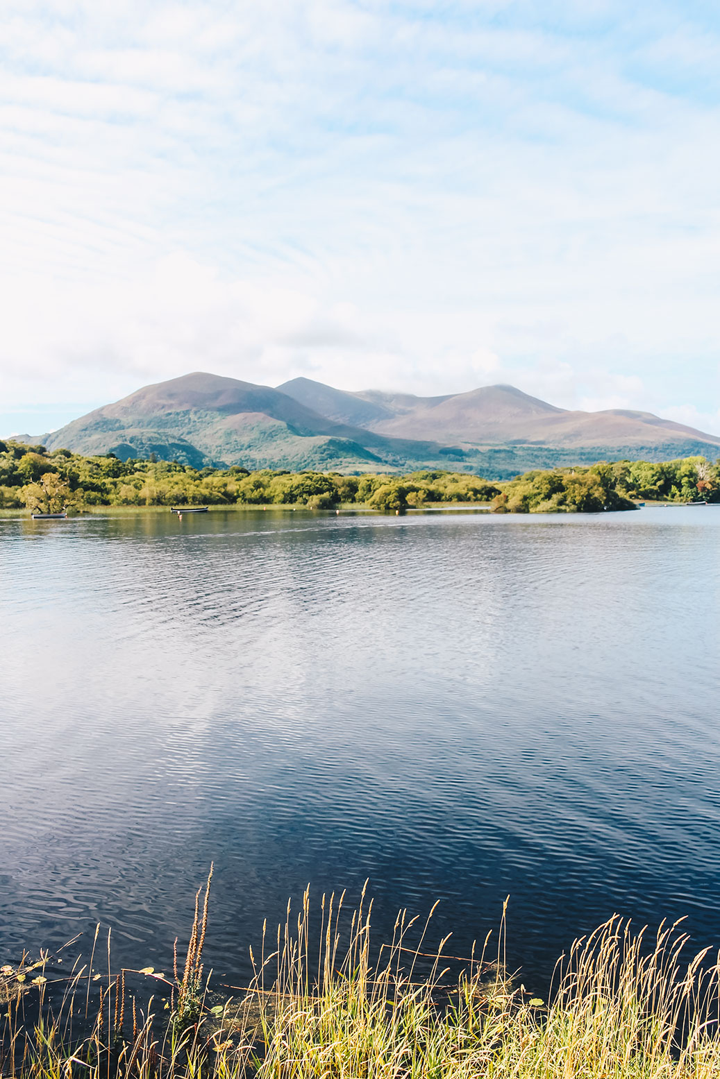 killarney-nationalpark-in-ireland-summer