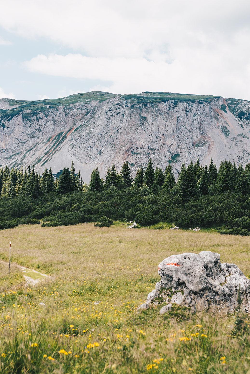 rax-wandern-gebierge-alpen-vanillaholica-reisen-österreich